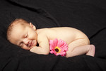 newbornshoot.